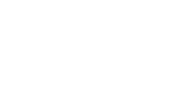 HOSEI University Global MBA Program